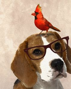 Beagle Nerd N Bird 8x10 Art Print by YeOldPaperFactory on Etsy, $19.99