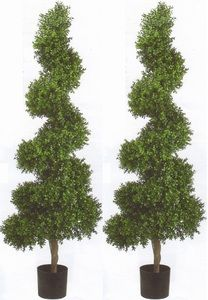 Two 6 foot Artificial Wide Boxwood Spiral Topiary Trees Potted