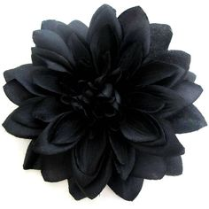 Large Black Dahlia Hair Flower Clip and Pin ($14) ❤ liked on Polyvore featuring accessories, hair accessories, flowers, rockabilly hair accessories, vintage hair accessories and flower hair accessories