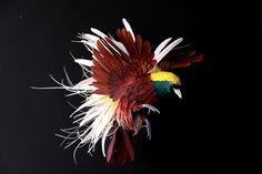 Diana Beltran Herrera's amazing paper art