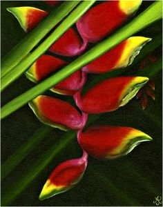 Heliconia Rostrata ... Oil Paintings of Tropical Flowers by Anna Keay Fine Art Maui Hawaii lobster claw