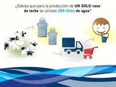 13 Ideas De Proyecto Usos Del Agua Agua Cuidado Del Agua Ahorro De Agua