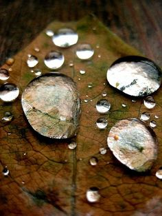 Autumn Rain Drops Photography Print 8x12 by earlymorningss on Etsy, $16.00