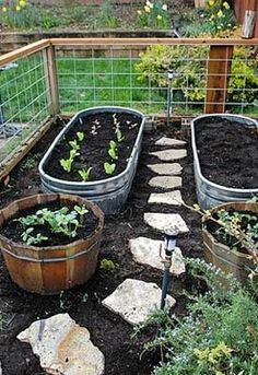 Ideas for vegetable garden. So cute! - Cool Nature - Nature Walkz