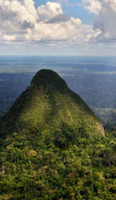 Sierra del Divisor National Park. Located in the Amazon rainforest in Peru, right at the edge of Brazil.