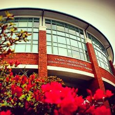Honorable Mention: Azaleas at Belk Library See all entries here: http://photo.library.appstate.edu/
