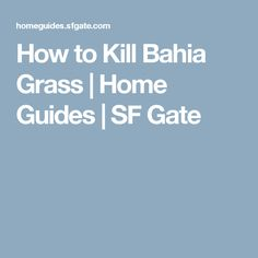 How to Kill Bahia Grass   Home Guides   SF Gate