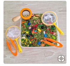 You can find sets of these tweezers and minibeasts at Rosebud Toy Library. Sensory Tub - minibeast activities theme green spilt peas, bugs beetles along with tweezers, bug catchers and magnifying glasses. Eyfs Activities, Preschool Activities, Jungle Activities, Preschool Letters, Motor Activities, Minibeasts Eyfs, Sensory Tubs, Sensory Play, Sensory Rooms