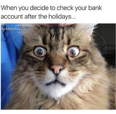 Look at my parents face after the holidays it looks exactly like this!