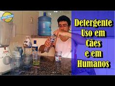 25 melhores ideias de matar pulgas no pinterest exterminador de pulgas feito em casa shampoo - Matar pulgas en casa ...
