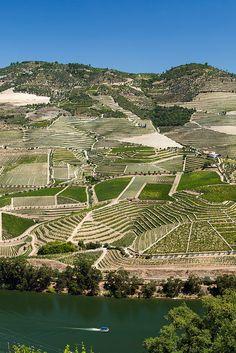 River Douro Valley Portugal - Vallée de la rivière Douro Portugal - Wine Vin Porto - Picture Image Photography | by SuperCar-RoadTrip.fr