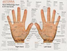 Reflexology ~ doTERRA - wonderful hand refloxology chart! Discover more about these fabulous oils at www.olioterapeutica.co.uk