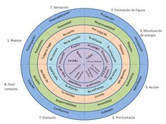 ciclo gestalt - Buscar con Google