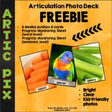 Artic Pix - FREEBIE