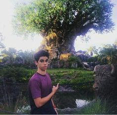 Cameron Boyce was at Disney's Hollywood Studios and Disney's Animal Kingdom on Thursday, April The Gamer's Guide to Pretty Much Everything Cameron Boyce, Disney World Resorts, Walt Disney World, Dove And Thomas, Gamer's Guide, Disney Descendants, Descendants Cast, Cute Celebrities, Celebs