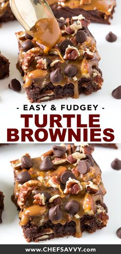 Amazing Thick and Fudgey Turtle Brownies layered with caramel sauce, pecans and chocolate chips. A super decadent dessert. Share them with friends this Christmas! Mini Desserts, Brownie Desserts, Brownie Cupcakes, Easy No Bake Desserts, Peanut Butter Desserts, Desserts For A Crowd, Cheesecake Brownies, Fudge Brownies, Brownie Recipes