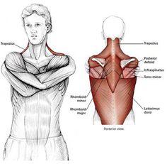 Wrap Around Shoulder Stetch