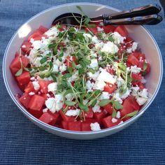 Vandmelon salat – Gardenize
