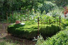 Un letto di fiori: gli oggetti quotidiani rivivono in giardino
