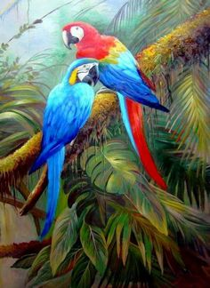 Pin by Afsaneh Rokni on Birds painting in 2019 Tropical Art, Tropical Birds, Exotic Birds, Colorful Birds, Watercolor Bird, Watercolor Paintings, Oil Paintings, Painting Art, Bird Kite