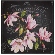 Trademark Fine Art 'Magnolias Graphic Art Print on Wrapped Canvas Size: H x W x D Artist Canvas, Canvas Art, Canvas Size, Collages D'images, Decoupage Paper, Decoupage Ideas, Art Themes, Chalkboard Art, Chalk Art