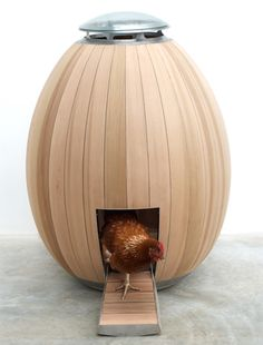 Yessss!! My future house will have chickens, and each chicken will live in a egg shaped house :)