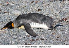pinguino tirado - Buscar con Google