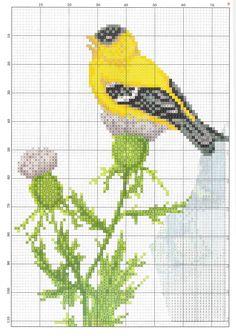 Acvuexuo Butterfly Cross Stitch, Cross Stitch Bird, Cross Stitch Samplers, Cross Stitch Charts, Cross Stitch Designs, Cross Stitching, Cross Stitch Embroidery, Cross Stitch Patterns, Perler Patterns