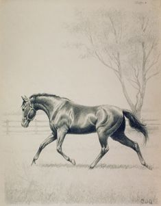 by C. W. Anderson I am who I am because of this man. Started my love of reading, horses, and art. The Billy and Blaze books set me on my lifes path