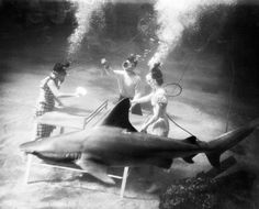 Inspiration to help you keep your resolution to get in shape: a slideshow of historical photographs of physical activity: http://nyr.kr/TP2eQs (This photo: A sand shark observes an underwater Ping-Pong game at the marine studios in Orlando, Florida, 1947. Bettmann/Corbis.)