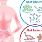 Intestinal microflora contains  more than 100,000 billion bacterial cells from over 400 different