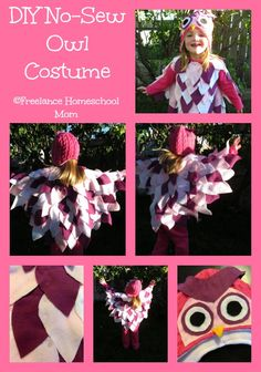 DIY No Sew Owl Costume.jpg
