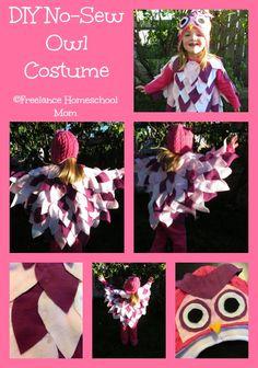 DIY No Sew Owl Costume.jpg