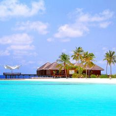 Hotels-live.com/cartes-virtuelles #MGWV #F4F #RT My obsession with #Maldives began from this place ... #blue #beach #memories from #paradise ______ Maafushivaru #island #resort #travellersplanetmaldives #travellersplanet #blogger by travellersplanet https://instagram.com/p/-ofpXdKLCy/