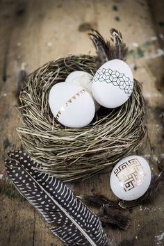 Tätowierte Eier