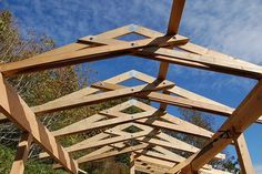 Scissor trusses over the courtyard