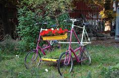 Explore antigavin's photos on Flickr. antigavin has uploaded 2914 photos to Flickr. Christiania Copenhagen, Copenhagen Denmark, Bike, Bicycles, Planters, Explore, Winter, Flowers, Photos