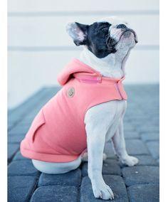 Dog Clothes – Warm cotton Dog Hoodie Peach – a unique product by Pawpawpaw on DaWanda