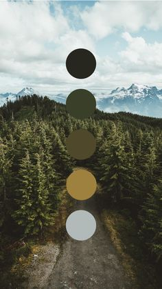 Brand color palette inspiration designed by Amari Creative, branding and design studio. Color Schemes Colour Palettes, Colour Pallette, Color Combos, Color Studies, Color Swatches, Color Theory, House Colors, Color Inspiration, Natural Colors
