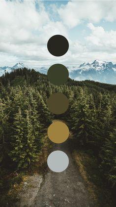 Brand color palette inspiration designed by Amari Creative, branding and design studio. Colour Pallette, Colour Schemes, Color Combos, Color Studies, Color Swatches, Color Theory, House Colors, Color Inspiration, Natural Colors