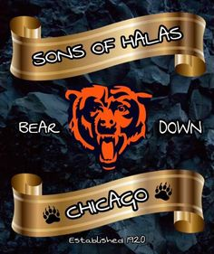 Chicago Bears Pictures, Nfc North, Walter Payton, Bears Football, Green Bay Packers, Nba