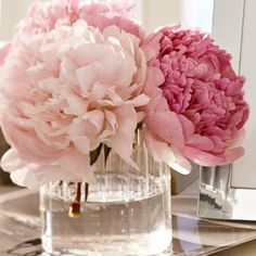You only need a few peonies to brighten up the room.