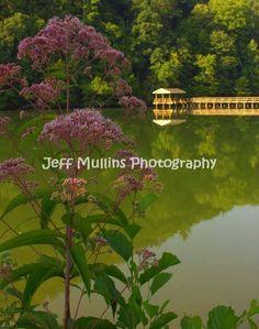 11 Best Steele Creek Park Bristol Tennessee Images Bristol