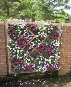 Fabulous DIY Vertical Garden Design Ideas Do you have a blank wall? do you want to decorate it? the best way to that is to create a vertical garden wall inside your home. A vertical garden wall, also called a… Continue Reading → Vertical Garden Design, Vertical Gardens, Fence Design, Garden Wall Designs, Lattice Design, Patio Design, Lattice Ideas, Garden Ideas To Make, Small Front Garden Ideas On A Budget