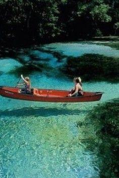 Blue Spring State Park, Florida's best manatee observation point