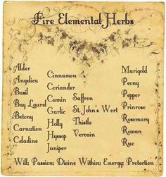 Elements Fire: #Fire Elemental Herbs.Good herbs for warming the bodies as well as seasonal warming.
