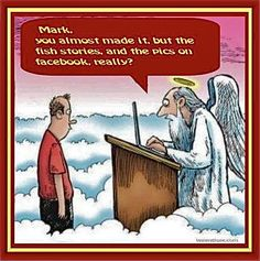 fishing humor images - Google Search