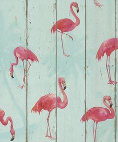 Rasch Rollo de papel de pared, fácil de colocar, alta calidad, acabado suave, diseño de flamencos rosa: Amazon.es: Bricolaje y herramientas