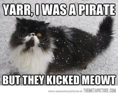 """Reminds me of the cat from """"The Last Unicorn,"""" hehe."""