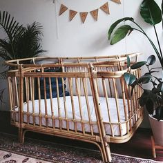 "🌿WATEGOS🌿 ""I love the cot and have had lots of compliments"". Another smitten customer 💕 Our Wategos is not only practical but a beautiful…"